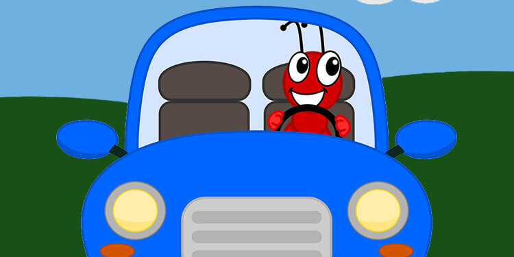 Ants In Car >> How To Get Rid Of Ants In A Car